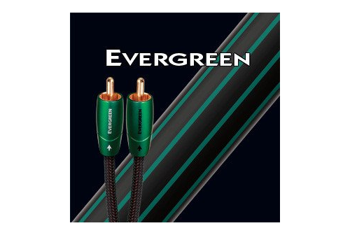 AUDIOQUEST EVERGREEN 0.6 m