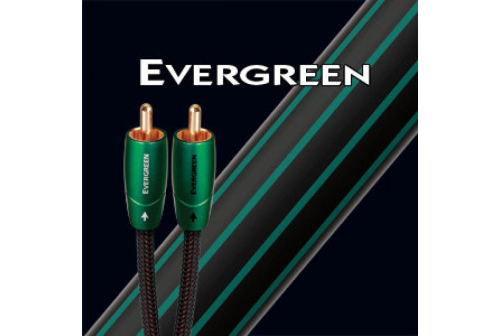 AUDIOQUEST EVERGREEN 1 m